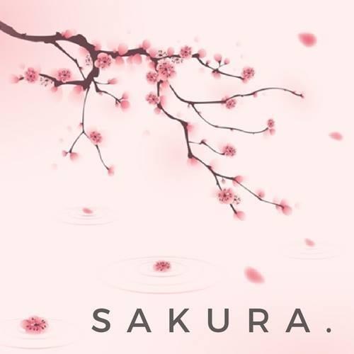 Sakura Sushi Serock